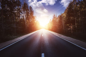 Asphalt road in the forest at sunset. Forward direction. Stock photo